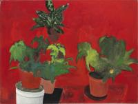Flowerpots on Red Background