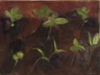 Gardenbed II